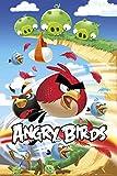 Angry Birds - Game Poster - Games-Poster Vögel grüne