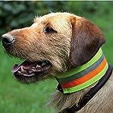 Akah - Collar de protección tricolor con elementos reflectantes