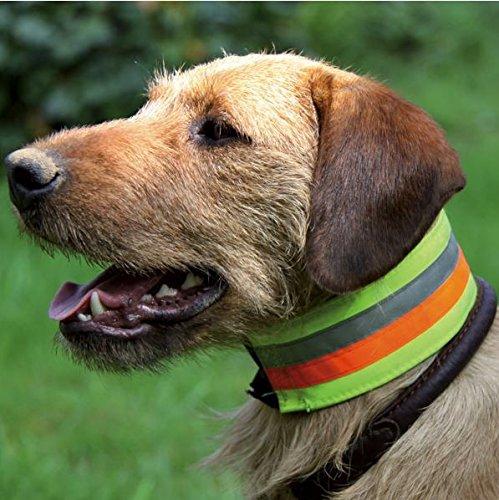 Signal- und Warnhalsung reflektierend, 3-Farbiges Halsband AKAH, Größen Halsband reflektierend:35 cm Halsumfang