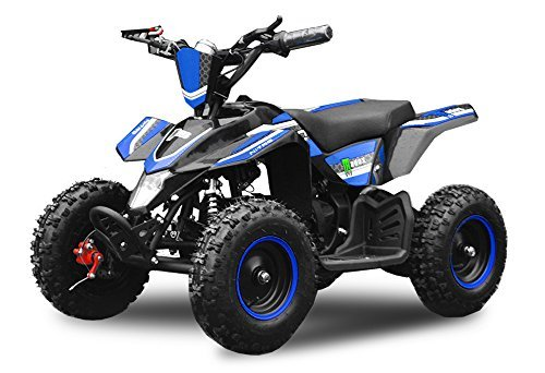 "Eco Quad 800W Madox De lujo 6"" 36V Quad para niños ATV Pocket Bike Mini - Azul"