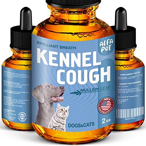Top 10 best selling list for supplements for dog bronchitis
