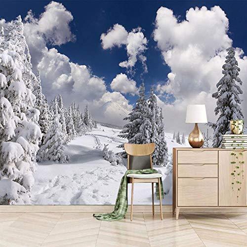 3d Vintage Fototapete Schnee Wandbilder Wohnzimmer Fernseher Sofa Hintergrund Tapete Moderne Wohnkultur Zimmer/Größe:450X300cm