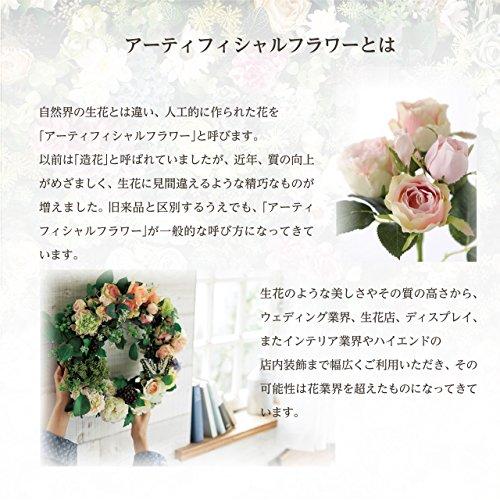 東京堂『MAGIQ(マジック)ケンチャパームツリー(FG022401)』