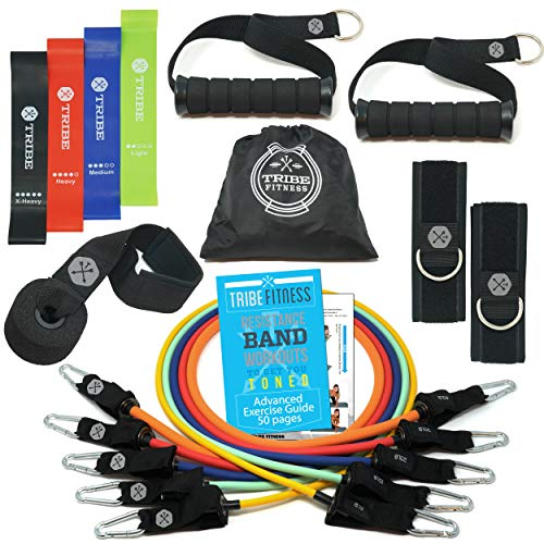 Resistance Bands Set Bundled with Loop Bands I Exercise Bands with Stackable Workout Bands, Door Anchor, Handles, Ankle Straps & Advanced eBook - for Resistance Training, Gym, Yoga, Pilates and More!