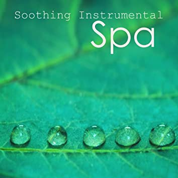 Soothing Instrumental Songs: Spa Music on Piano