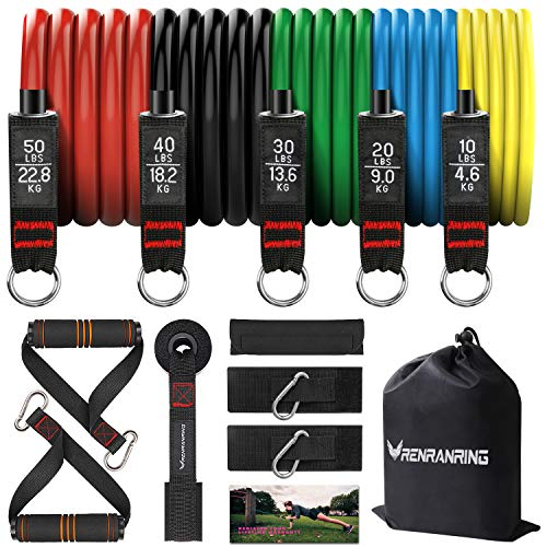 RENRANRING Resistance Bands Set,Exercise Bands with Stackable...