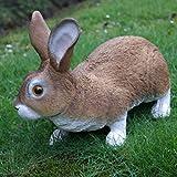 Dekofigur Hase Kaninchen Tierfigur Gartenfigur Wildkaninchen Zwerghase - 4