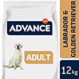 ADVANCE Labrador Retriever Hundefutter, 12kg, 1er Pack (1 x 12 kg)