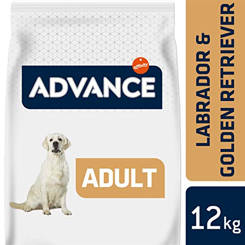 ADVANCE Labrador Retriever hondenvoer, 12kg, 1-pack (1 x 12 kg)