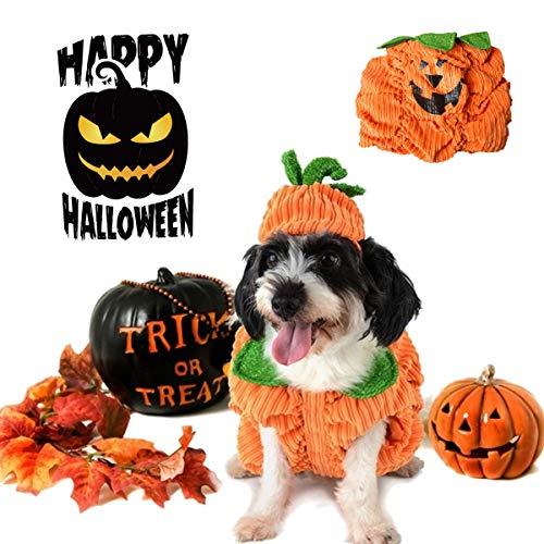 RanDal Hund Halloween Kostüm Hundehalsband Kürbis Design Kreative Lustige Haustier Kleidung Dekorationen - S