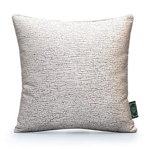 QXbecky Cojines Textura de Polvo Desnudo, Lujo Ligero, Alta precisión, con Almohada Cuadrada de núcleo Interior, Accesorios de decoración de sofá Minimalistas Modernos, Respaldo de 45cm