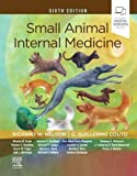 Small Animal Internal Medicine, 6e