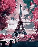 qhzcj malen nach Zahlen Erwachsene Ölgemälde Geschenk für Kinder Malen Nach Zahlen Kits Home Haus Dekor - Eiffelturm 40x50 (cmohne Rahmen)