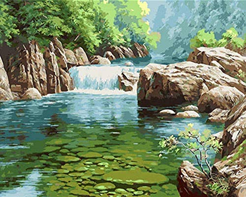 Pintar por número kit digital de bricolaje para adultos y niños con 3 juegos de pinceles y pintura acrílica pintura lienzo de pintura preimpreso piedra de río 40x50cm