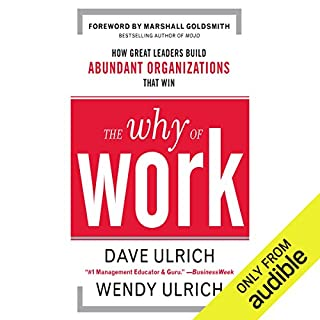 The Why of Work audiobook cover art