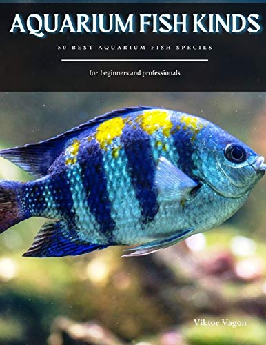 AQUARIUM FISH KINDS: 50 Best Aquarium Fish Species