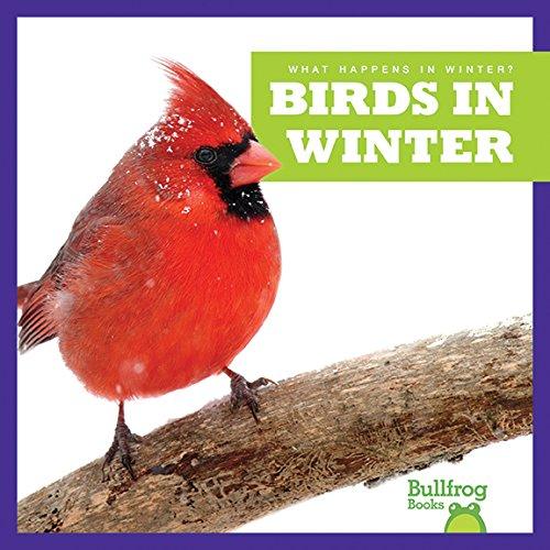 Birds in Winter (Bullfrog Books: What Happens in Winter?)