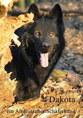 Dakota: ein altdeutscher Schäferhund