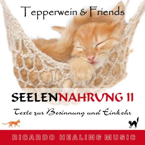 Tepperwein & Friends: Texte zur Besinnung und Einkehr (Seelennahrung 2) Titelbild