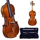 Kadence, Vivaldi 4/4 Violin With Bow, Rosin, Hard Case V-100