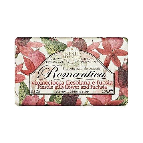 Nesti Dante Romantica Levkoje & Fuchsia, 1er Pack (1 x 250 g)