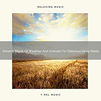 Dreamy Music Of Weather And Animals For Delicious Deep Sleep