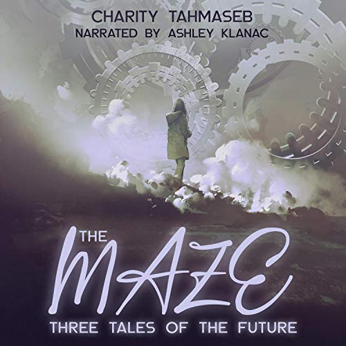The Maze Audiobook By Charity Tahmaseb cover art