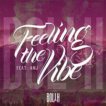 Feeling the Vibe (feat. Amj)