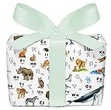 Juego de 5 hojas de papel de regalo con diseño del alfabeto del abecedario para el comienzo del colegio para niños, para cumpleaños, impreso en papel con certificado PEFC, 50 x 70 cm