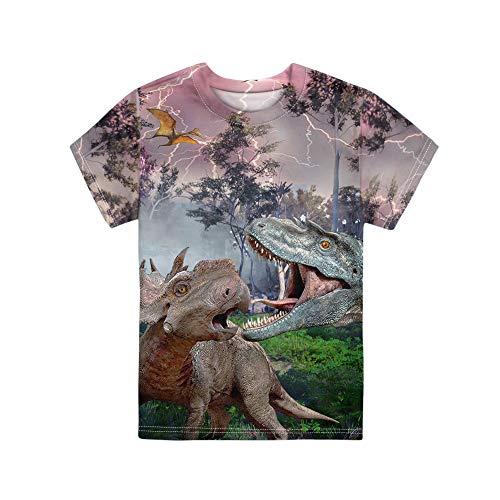 HUGS IDEA - Camisetas de manga corta para niños, ajuste regular y cuello en O, Jerséis para niños de 3 a 16 años Dinosaurio 2 5-6 Años