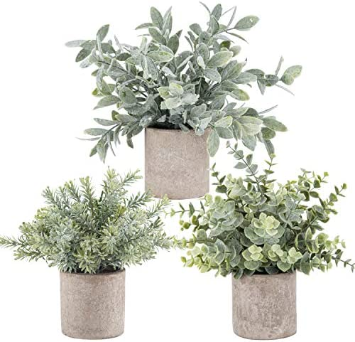 Top 10 Best Artificial Potted Plant for Home and office of The Year 2020, Buyer Guide With Detailed Features