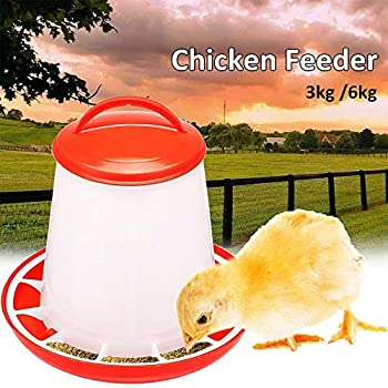 Base de mangeoire pour poussin pour bocal, mangeoire pour petits oiseaux et poulets, abreuvoir pour poulet et poignée de poulet - facile à fixer 3/6 kg