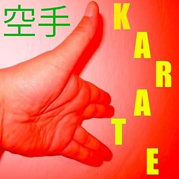 Karate-Musik Vol. 9