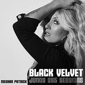 Black Velvet (Junos 365 Sessions)