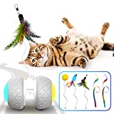 k-berho Interactive Cat Toys for Indoor Cats, Irregularly Move Cat Ball Toys for Kitten/Cats, Robotic Cat Toy with Led Light/Feathers/Ribbon/Mouse Toys, Floors/Carpet Available, USB Charging