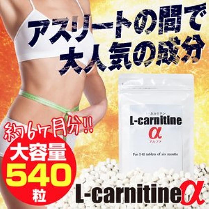 ぴかぴか批判的に応答L-carnitineα(L-カルニチンα)