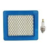 WZhen Plug &Air Filter Kit De Servicio Para Honda Izy/Hrx Cortacéspedes Y Gcv 135/160/190
