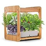 ERGO LIFE Hydroponics Growing System Indoor Gardening Kit w/LED Plant Grow Light, Nature Bamboo Frame,...