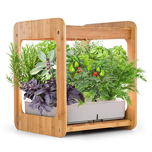 Photo of ERGO LIFE Hydroponics Growing System Indoor Gardening Kit w/LED Plant Grow Light, Nature Bamboo Frame, Hydroponics Gardening Plant Kit w/Nutrients,Water Tank, Timer,12 Plants Baskets