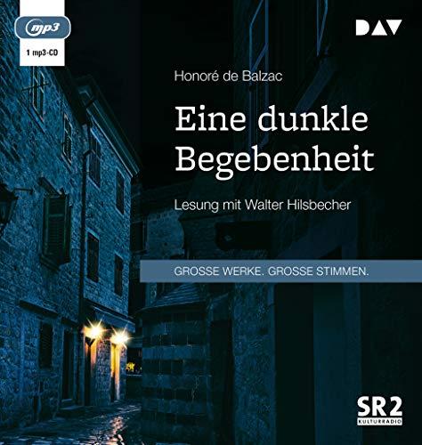 Eine dunkle Begebenheit: Lesung mit Walter Hilsbecher (1 mp3-CD)