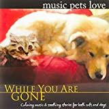 While You Are Gone: Music Pets Love (Calm Music for Pets Relaxation & Separation Anxiety)