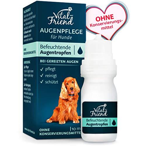 Vital-Friend – sanfte Augenpflege & Augenreinigung für Hunde - Konservierungsmittelfrei - befeuchtende Augentropfen, Schutz, Pflege, 10 ml