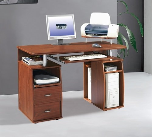 Computer Desk with Printer Stand and Cabinet