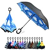 Blue Sky Double Layer Inverted Umbrellas - C Shaped Handle Reverse Folding Windproof Umbrella for Men and Women
