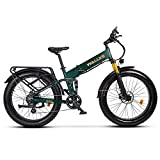Wallke X3 Pro26-inch Upgrade The Frame Fat Tire Electric Bicycle 48V14AH Battery Adult Auxiliary Bike 750W Mountain Snow E-Bike (Green)