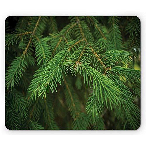Altijd groene muismat, patroon van takken van een dennenopname foto met een onscherpe achtergrond, ver Green Evergreen