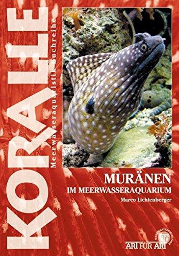 Muränen: Im Meerwasseraquarium (Art für Art / Meerwasser)