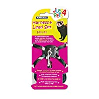 Comfortable & stylish Strong 'click' nylon buckles Fully adjustable harness with 'd' ring Chrome plated die-cast trigger hook Soft polyester material for maximum comfort Age range description: All Life Stages