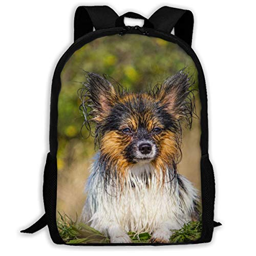 Student Rugzak, Papillon Kleine Hond Nat Hond College Tassen, Helpful Adult Schouder Rugzakken voor Outdoor Reizen Sporten, 43x28x16cm
