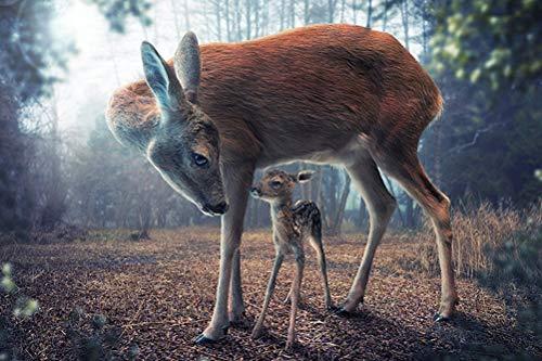 WLH- Volwassenen dier paradijs puzzel nieuwe collectie Puzzel 1000 stukjes bos dier Houten educatief speelgoed Decor (Color : B)